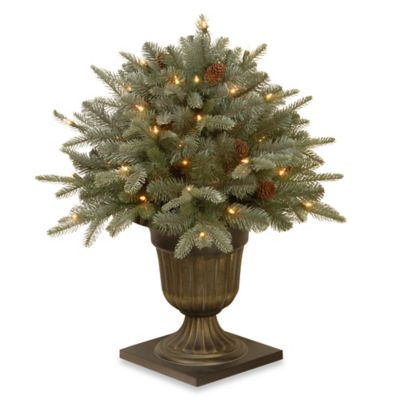 National Tree 20-Inch Frosted Artic Spruce Hanging Basket