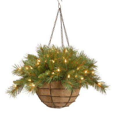 National Tree 20-Inch Tiffany Fir Hanging Basket Pre-Lit with 50 Lights