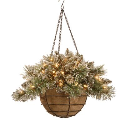 National Tree 20-Inch Pre-Lit Glittery Bristle Pine Hanging Basket