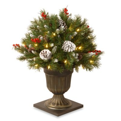 National Tree 26-Inch Frosted Berry Porch Bush Pre-Lit with 50 Clear Lights