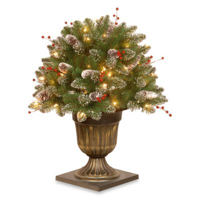 National Tree 26-Inch Glittery Mountain Spruce Porch Bush Pre-Lit with 50 Clear Lights