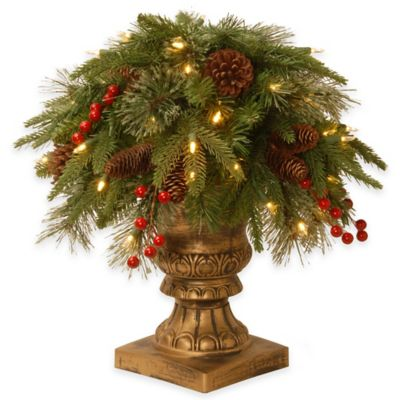 National Tree 26-Inch Colonial Porch Bush Pre-Lit with 50 Clear Lights