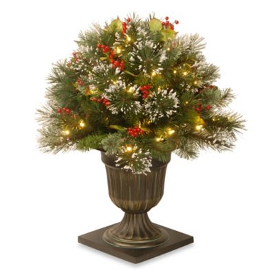 National Tree 26-Inch Wintry Pine Porch Bush with Clear Lights