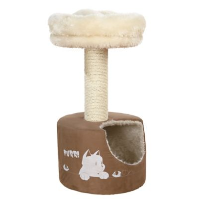 Cat Scratching Post with Bed