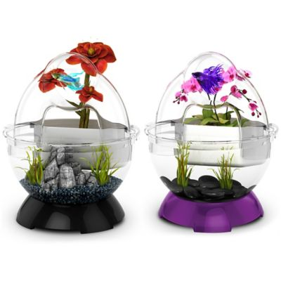 BioBubble Dual Environment Betta Tunnel with Planting Cup in Black Onyx
