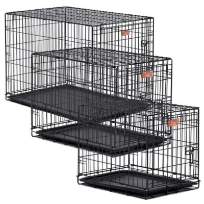 Midwest iCrate 1530 1-Door Fold-and-Carry Crate with Divider
