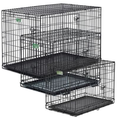 iCrate Double Door Folding 30-Inch Crate with Divider