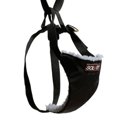Solvit Small Economy Car Safety Dog Harness in Black