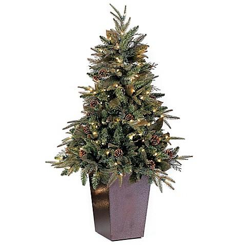 Buy Bethlehem Lights 5 Foot Green River Spruce Potted
