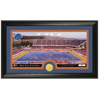 Boise State University Stadium Bronze Coin Panoramic Photo Mint