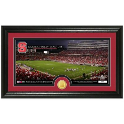 North Carolina State University Stadium Bronze Coin Panoramic Photo Mint