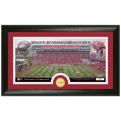 University of Arkansas Stadium Bronze Coin Panoramic Photo Mint