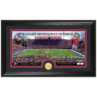 University of Mississippi Stadium Bronze Coin Panoramic Photo Mint