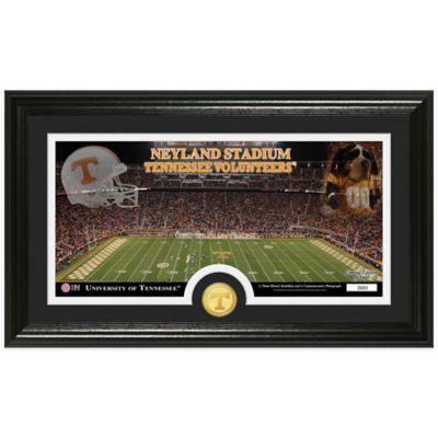 University of Tennessee Stadium Bronze Coin Panoramic Photo Mint