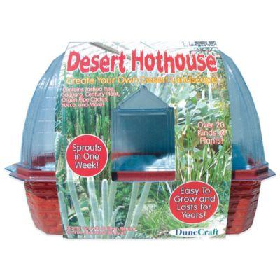 Activity > DuneCraft Desert Hothouse™ Windowsill Greenhouse