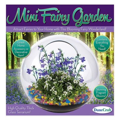 810017012572 Upc Dunecraft Gt 0257 Glass Terrarium Mini Fairy