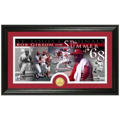 MLB St. Louis Cardinals Bob Gibson Coin Panoramic Photo Mint