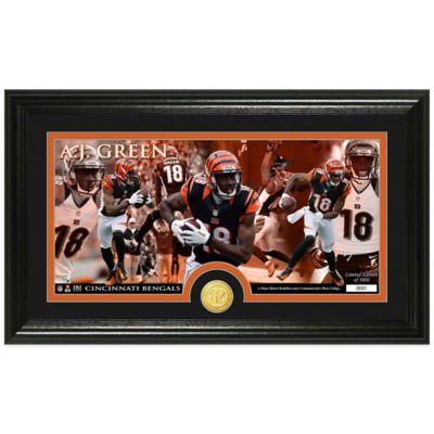 NFL Cincinnati Bengals AJ Green Coin Panoramic Photo Mint