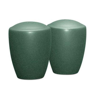 Noritake® Colorwave Salt and Pepper Shakers in Spruce