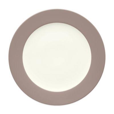 Colorwave Dinner Plate in Clay