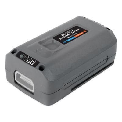 Snow Joe iON 40-Volt EcoSharp® 4.0 Ah Lithium-Ion Battery