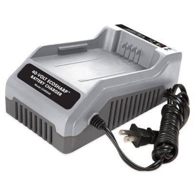Snow Joe iON 40-Volt EcoSharp® Lithium-Ion Charger