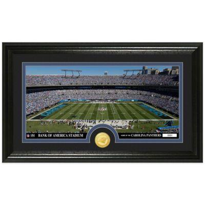 NFL Carolina Panthers Stadium Panoramic Photo Mint