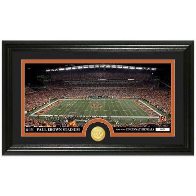 NFL Cincinnati Bengals Stadium Panoramic Photo Mint