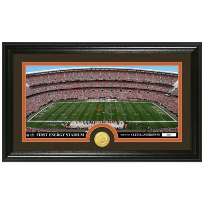NFL Cleveland Browns Stadium Panoramic Photo Mint
