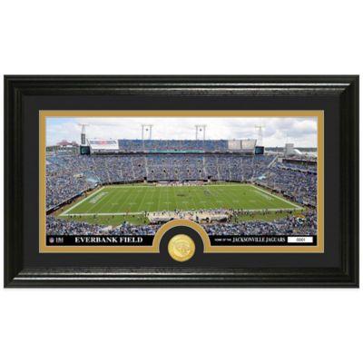 NFL Jacksonville Jaguars Stadium Panoramic Photo Mint