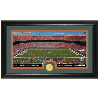 NFL Miami Dolphins Stadium Panoramic Photo Mint