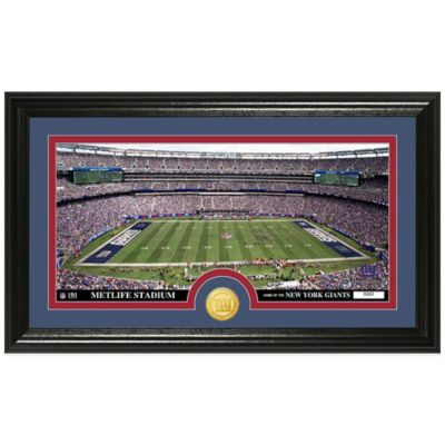 NFL New York Giants Stadium Panoramic Photo Mint
