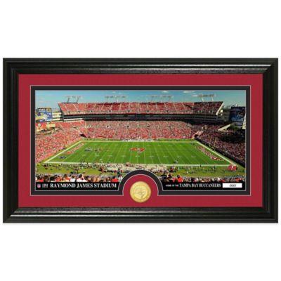 NFL Tampa Bay Buccaneers Stadium Panoramic Photo Mint