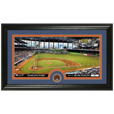 MLB Miami Marlins Dirt Coin Panoramic Photo Mint