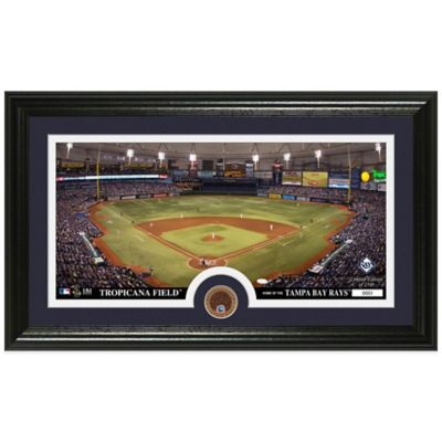 MLB Tampa Bay Rays Dirt Coin Panoramic Photo Mint