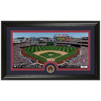 MLB Washington Nationals Dirt Coin Panoramic Photo Mint
