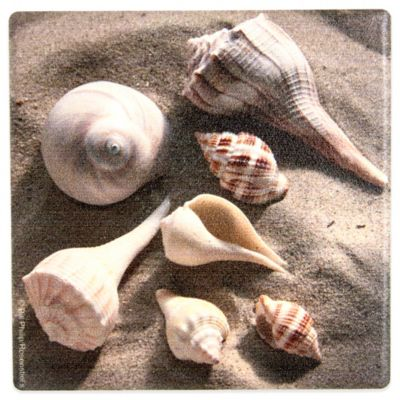 Thirstystone® Tropical Sea Shells Coaster