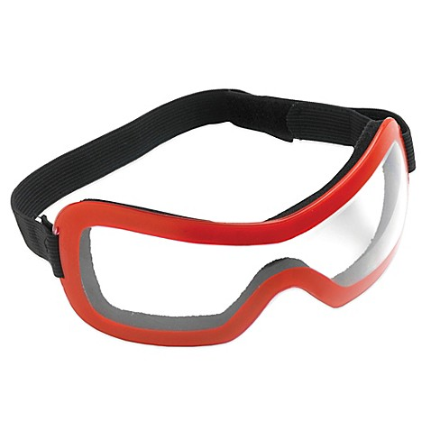 Bed Bath Beyond Goggles
