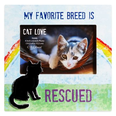 "CR Gibson 8-Inch x 8-Inch ""My Favorite Breed is Rescued"" Cat Lover Pet Frame with Easel Back"