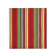 Mystic Stripe Reversible Placemat in Multicolor
