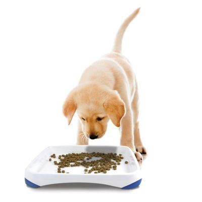 Pet Stages Perfect Pace Small Feeding Tray