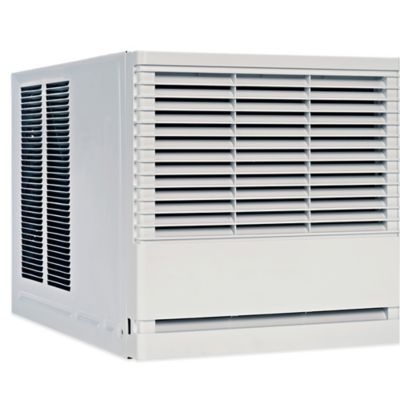 Friedrich® CP12 Chill 12,000 BTU Air Conditioner