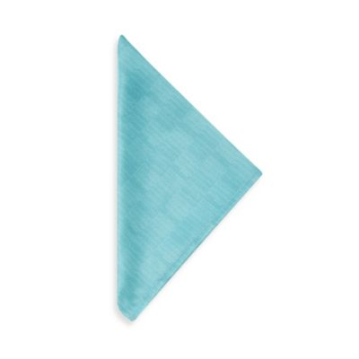 Mason Napkins in Aqua (Set of 4)