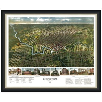 Framed Bird's Eye View of Houston, TX Wall Décor