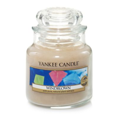 Yankee Candle® Windblown™ Small Jar Candle