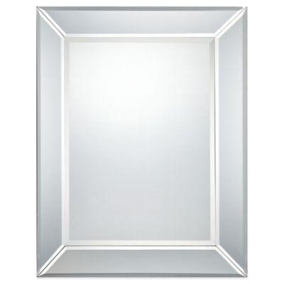 Quoizel® Carrigan 26-Inch x 32-Inch Mirror