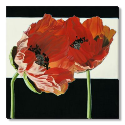 Janice Porter Marckstein Poppies Wall Art in Black/White