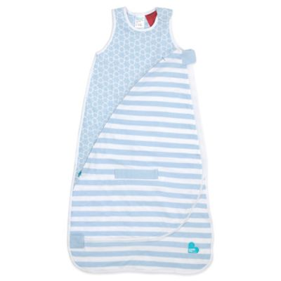 Love to Dream™ Size 4-12M Medium-Weight InVenta Sleep Bag in Blue