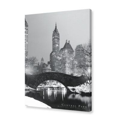 View of Central Park with New York City Skyline Background Canvas Wall Art