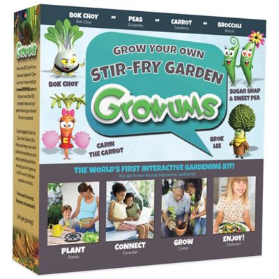 Growums Grow Your Own Stir Fry Garden Kit